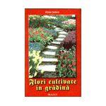 Flori cultivate in gradina