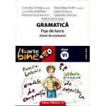 Gramatica. Fise de lucru pentru clasa a VI-a