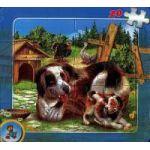 Puzzle - Caţeluşi