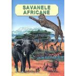 Savanele africane