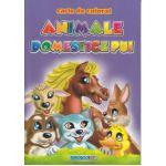 Animale Domestice Pui