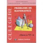 Probleme de matematica cl. 6 culegere