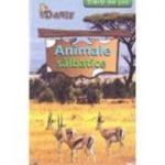 Carti de joc - Animale salbatice