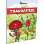 Citesc! Trandafirul Nivelul 0 - Emil Garleanu