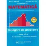 Matematica. Culegere de probleme. Clasa a X-a