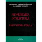Proprietatea intelectuala, raspunderea penala - Eliodor Tanislav