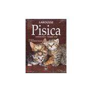 Pisica - comportament, ingrijiri, rase (enciclopedie Larousse)
