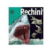 Rechini - colectia Insiders