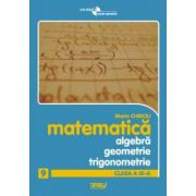 Algebra, geometrie si trigonometrie. Clasa a IX-a. Anexa la manual