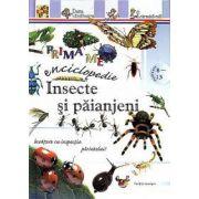 Prima mea enciclopedie: Insecte şi păianjeni