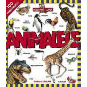 Animalele (Descoperă lumea)