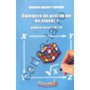 Culegere de probleme de aritmetică şi algebră pentru clasele IX - XII
