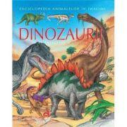 Dinozaurii pe intelesul copiilor - Emilie Beaumont