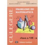 Probleme de matematica cl. 7 - culegere