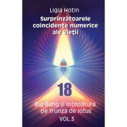 Surprinzatoarele coincidente numerice ale vietii – Big Bang si intepatura pe frunza de lotus vol. 3