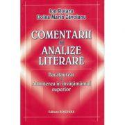Comentarii si analize literare - Ion Rotaru