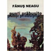 Punti prabusite - Fanus Neagu