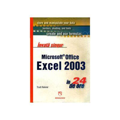 Învaţă singur Microsoft Office Excel 2003 în 24 de ore