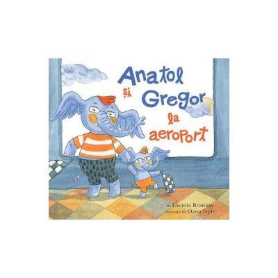 Anatol si Gregor la aeroport - Lavinia Braniste