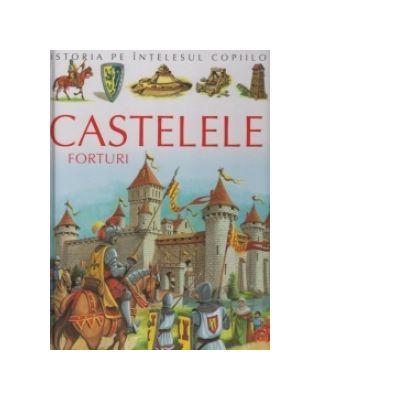 Castele - forturi