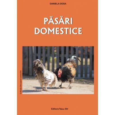 PĂSĂRI DOMESTICE - Daniela Dosa