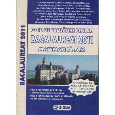 Ghid de pregatire pentru Bacalaureat 2011 - Matematica M2