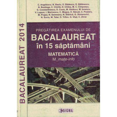 Pregatirea examenului de Bacalaureat 2014 - Matematica M_mate-info