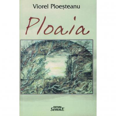 Ploaia - Viorel Ploesteanu